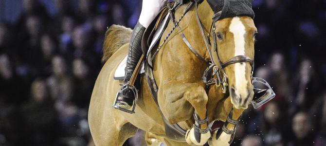 Coriana van Klapscheut Sold to Spain