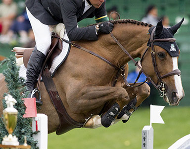 Artisan Farms Acquires Two New Mounts for Eric Lamaze