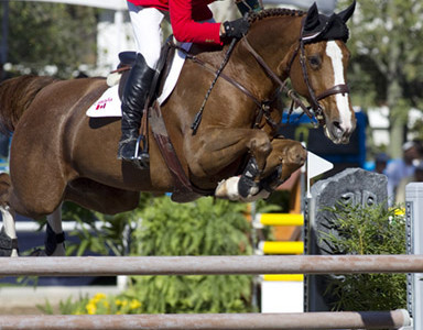 Canadian Show Jumping Team Lies Fifth at Pan American Games