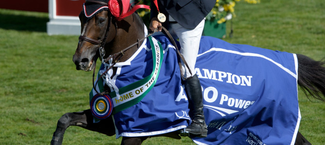 Eric Lamaze and Hickstead Make History at Spruce Meadows