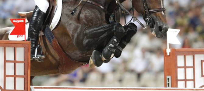 Last Chance to Breed to the Olympic Champion, Hickstead