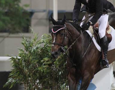 Eric Lamaze Wins First Leg of Global Champions Tour Final in Doha, Qatar
