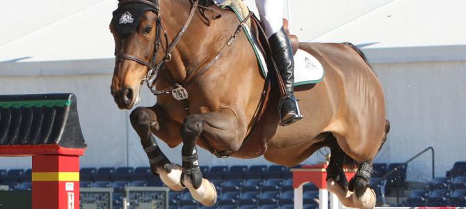 Canada's Eric Lamaze Wins in Wellington, Florida