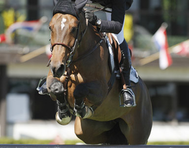 Canada's Eric Lamaze Scores Victory in Salzburg