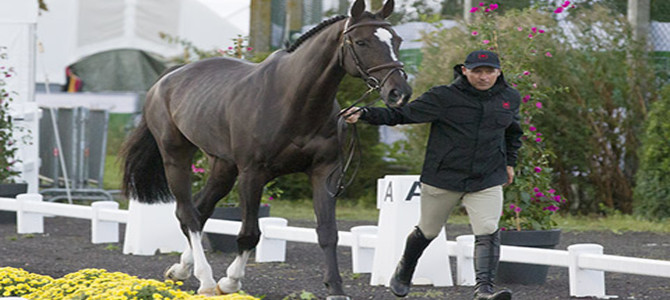 Canadian Show Jumping Team Ready for World Championship Competition