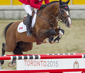 Show Jumping Closes Out Equestrian Competition at Pan American Games