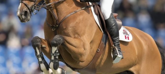 Canada's Eric Lamaze Ranked Top Ten in the World