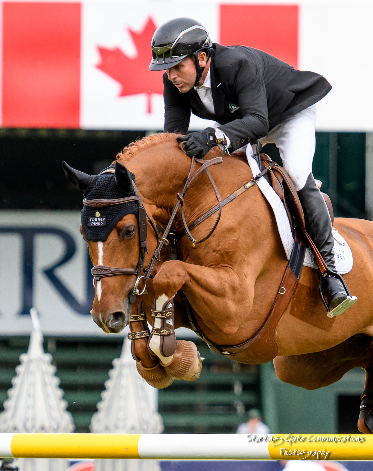 News   Torrey Pines Stable   Home of Olympic Champion Eric